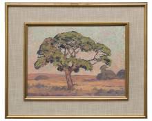 Pierneef 'Wilde Vye Boom, Sweetwaters, Louis Trichardt' (with frame)