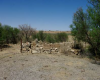"""Colonial Period – Farmstead – 28°04'26.0""""S; 26°54'28.9""""E - View of the 1st livestock enclosre, Vaalkranz 2/220, Welkom, Free State Province"""