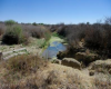The Rietspruit River across the property Onverwag RE/728, Welkom, Free State Province